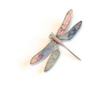 Our Brooch Collection Just Got Even Bigger!